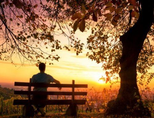 Spitzenleistung und die Fähigkeit zur Entspannung